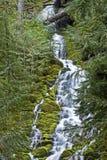 Medelavsnittet av övrenärståenden faller centrala Oregon Royaltyfria Bilder