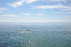 Medelhav på en solig dag Yachter i havet Arkivfoto