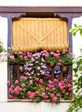 Medelhavs- fönster dekorerade rosa och röda blommor Royaltyfria Bilder