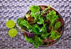 Medelhavs- gräsplan för grön sallad och röda lettuccespenat Arkivbilder
