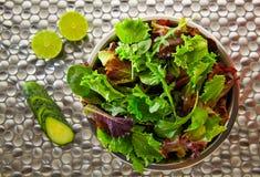Medelhavs- gräsplan för grön sallad och röda lettuccespenat Fotografering för Bildbyråer