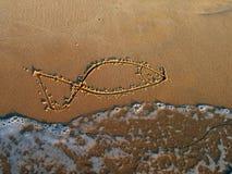 medelhavs- hav för fisk Royaltyfria Foton