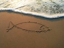 medelhavs- hav för fisk Arkivfoton