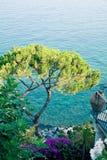 Medelhavs- landskap, Italien. Fotografering för Bildbyråer