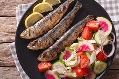 Medelhavs- mat: grillade sardiner med sallad för ny grönsak Arkivbild