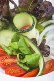 Medelhavs- sallad i en restaurang Fotografering för Bildbyråer
