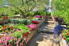 Medelhavs- trädgård arkivbilder