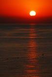 medelhavs- över havssoluppgång Arkivfoto