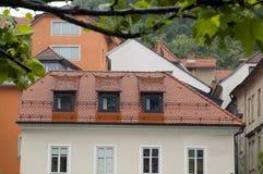 Medeltida arkitekturbyggnad på den Ljubljanica floden Ljubljana Sl royaltyfri fotografi