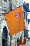 medeltida flagga Arkivbilder