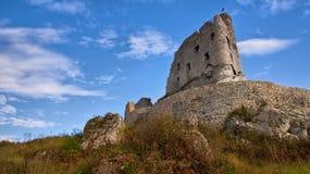 Medeltida fördärvar av den Mirow slotten, Polen Arkivfoto