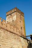 Medeltida gammal slott Castelvecchio i Verona, Italien Arkivbild