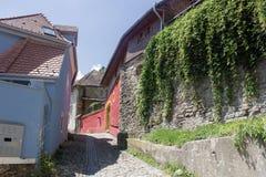 Medeltida gatasikt i den Sighisoara citadellen, Rumänien Royaltyfri Fotografi