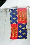Medeltida heraldisk flagga Royaltyfri Bild