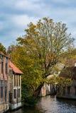 Medeltida hus över kanalen i Bruges på en molnig dag Royaltyfria Bilder