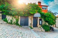 Medeltida kroatisk gammal gata och blommig ingång i Rovinj, Europa royaltyfri bild