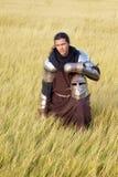 medeltida riddare fotografering för bildbyråer