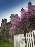 medeltida slott Royaltyfri Foto