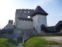 Medeltida slott Stari som är akademiker i Celje i Slovenien royaltyfri fotografi