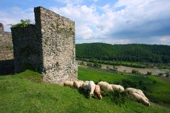 medeltida soimos för fästning Arkivfoton