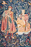 medeltida tapestry Arkivbild