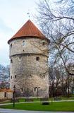 Medeltida torn i den gamla Tallinn staden Royaltyfria Bilder