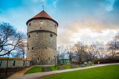 Medeltida torn i den gamla Tallinn staden Fotografering för Bildbyråer