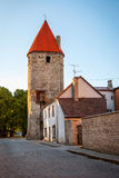 Medeltida torn i Tallinn den gamla staden, Estland Fotografering för Bildbyråer