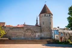 Medeltida torn i Tallinn den gamla staden, Estland Royaltyfri Bild