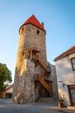 Medeltida torn i Tallinn den gamla staden, Estland Royaltyfria Foton