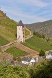 Medeltida torn som förbiser vingårdar och lilla staden i Bacharach, Tyskland Vingårdar växer upp berget royaltyfria foton