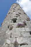 Medeltida torn som ser upp, Clonmacnoise kloster- plats Royaltyfria Bilder