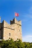 medeltida tornwatch för slott Arkivbilder