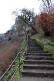 Medeltida trappa för småstadEltz slott royaltyfria foton
