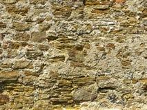 medeltida vägg royaltyfri bild