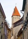 Medeltida vägg och torn i den gamla Tallinn staden Arkivfoto