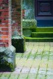 medeltida väggar för dörr Royaltyfria Foton