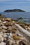 Medes Islands, Costa Brava, Spain. Calm sea in front of the Medes Islands, one August morning Royalty Free Stock Image