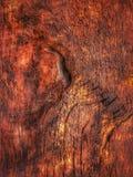 medf8ort textur trä Träd boaen Tappning royaltyfria bilder