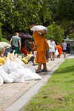 medf8ora översvämningsmonken förhindra sandbags till royaltyfri bild
