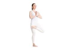 Media actitud del árbol de loto de la yoga Imágenes de archivo libres de regalías