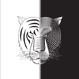 Media cara del tigre foto de archivo