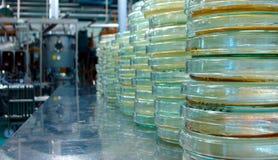Media del laboratorio Fotografie Stock Libere da Diritti