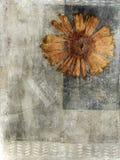Media mezclado presionado de la flor Imagen de archivo