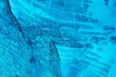 Media misti blu variopinti che dipingono il primo piano di superficie di macro dei dettagli Fotografia Stock Libera da Diritti