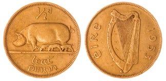 Media moneda del penique 1953 aislada en el fondo blanco, Irlanda Imagenes de archivo
