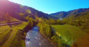 Mediados de aéreo sobre el río y el prado frescos de la montaña en la mañana soleada del verano Camino de tierra rural abajo metrajes
