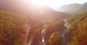 Mediados de aéreo sobre el río y el prado frescos de la montaña en la mañana soleada del verano Camino de tierra rural abajo almacen de video