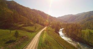 Mediados de aéreo sobre el río y el prado frescos de la montaña en la mañana soleada del verano Camino de tierra rural abajo Vaca almacen de video