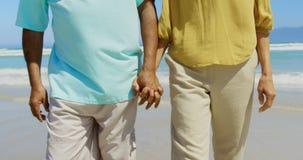 Mediados de sección de los pares afroamericanos mayores activos que llevan a cabo las manos y que caminan en la playa 4k metrajes